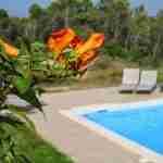 water in de tuin in Zuid Frankrijk-zwembad in tuin via tuinachitect Marjan de Koning.