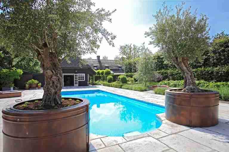 zwembad met olijven bij gastenverblrijf in tuin bij herenboerderij na tuinontwerp florera.
