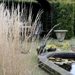 ADMOSPHERE WITH CALAMAGROSTIS