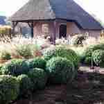 Tuinadvies, tuinaanleg gedeelte tuin-tuinrenovatie via Florera tuinen ea. buitenruimtes.