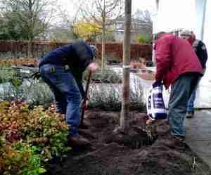 extra vitamientjes tijdens TUINAALEG worden toegevoegd bij zojuist aangeplante boom.