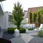basiskleur wit doorgevoerd in hele tuin als wens van tuinklant voor tuinontwerp florera.nl.