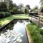 strakke vijvers met koi in landelijke onderhoudsvriendelijke tuin Eersel