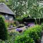 klassieke kleine vijver in weergaloze natuurrijke tuin bij villa.