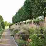 Marjan de Koning ontwerpt weergaloze exclusieve landelijke tuin Noord Brabant