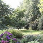 Stoere beplanting in landelijke tuin