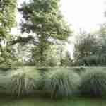 zomers genot met rust en ruimte in de tuin