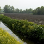 landschap gemeente Haaren-florera.nl