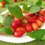 Eetbare vruchten aan haag in de tuin- florera tuinarchitect