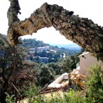 tuinontwerp en tuinadvies tuin in Zuid Franrkijk