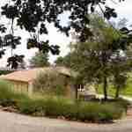tuin in Zuid Frankrijk- lavendel tuin