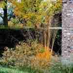 Landelijke herenboerderij tuin tijdens de herfst- herfsttuin Oirschot