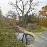 tuinplan op maat geeft jaarrond weergaloze tuin- herfsttuin