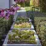 Vrolijke kleurtjes in de voorjaarstuin Eindhoven met Epimedium in tuinvazen