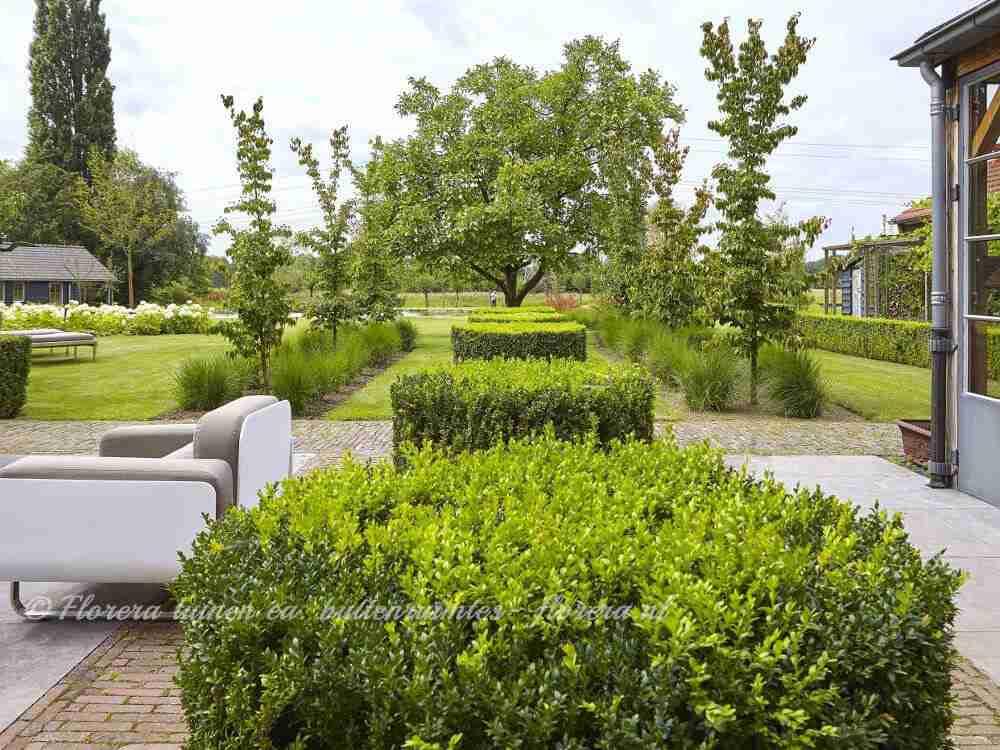 Stunning best florera geeft tuinadvies euro online with for Tuinontwerp intratuin