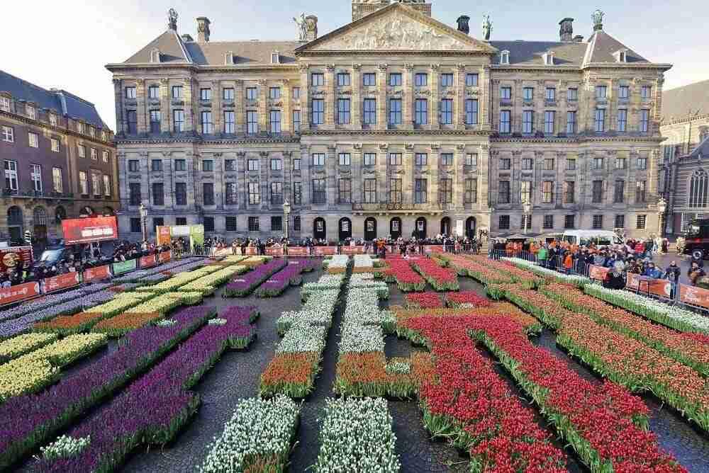 tulpen op de Dam te Amsterdam tijdens de Nationale dag