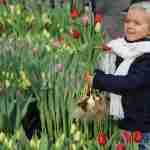 tulpen met weergaloze kleuren in Amsterdam, maar ook in de tuin- florera.nl