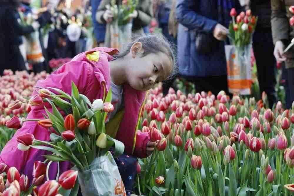 voorjaarstuin extra mooi met tulpen- florera.nl