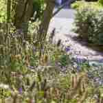 tuin voor de toekomst- biodiversiteit in luxe kantoortuin rondom villa Edufax- florera.nl