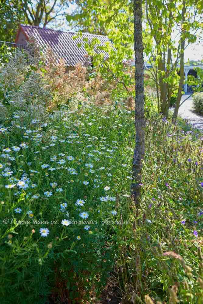 duurzame kantoortuin rondom villa- villatuin met veel biodiversiteit- florera.nl
