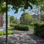 toekomstgerichte villatuin rondom kantoor- exclusieve tuin- florera.nl