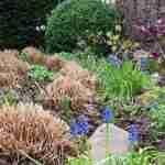 Marjan de Koning geeft haar vakkennis over tuinonderhoud graag aan u door- florera tuinontwerp